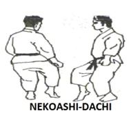 bases do karate 7